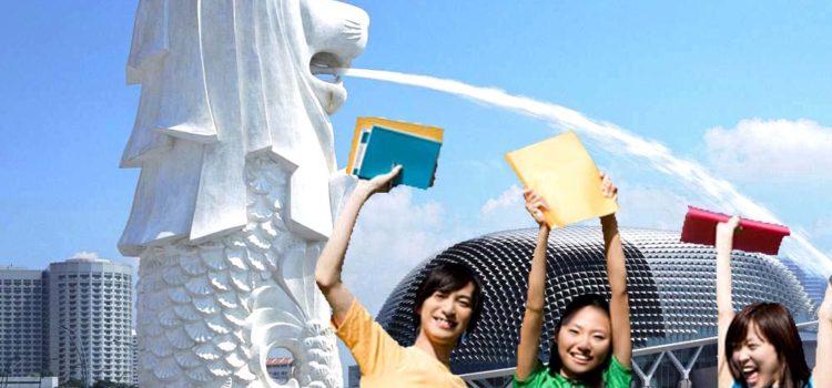 Đi du học Singapore thì học ngành nào, trường nào?