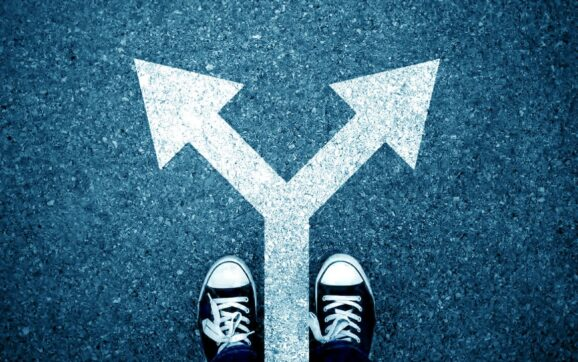 Lựa chọn ngành học ở Hà Lan – Một bước đi quan trọng quyết định tới tương lai